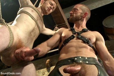 Bound Gods download